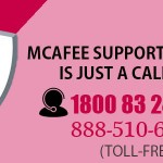 McAfee Support Phone Number